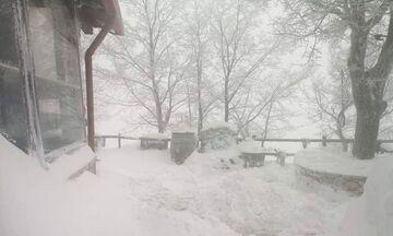 Χιονίζει στην Πάρνηθα - Δείτε εικόνα και βίντεο