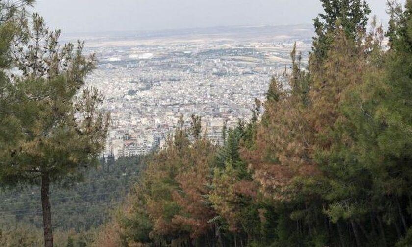 Θεσσαλονίκη: Απαγόρευση της κυκλοφορίας στο Σέιχ Σου