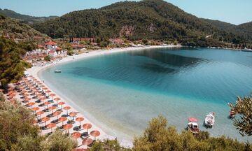 Φως στην Ελλάδα: Η παραλία στο Αιγαίο που τα πεύκα ακουμπούν στην θάλασσα