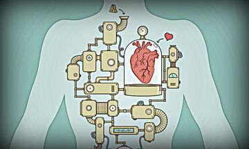 Οι 12 συνήθειες που αποδυναμώνουν το ανοσοποιητικό σύστημα