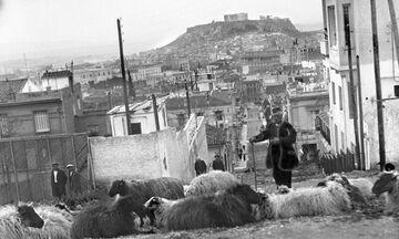 Φως στην Ελλάδα: Πώς ήταν το Κολωνάκι και πώς λεγόταν όταν έβοσκαν εκεί κοπάδια