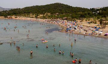 Ανοίγουν το «Divani Apollon Palace & Thalasso» και η παραλία Apollon Beach