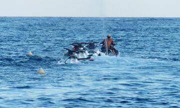 Πειραιάς: Απαγόρευση κυκλοφορίας ατομικών σκαφών - θαλάσσιων μοτοποδηλάτων