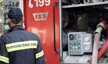 Φωτιά στο άλσος Βεΐκου (pic)