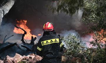Μεγάλη φωτιά στο Μαρτίνο: Έκλεισε η εθνική οδός Αθηνών - Λαμίας!