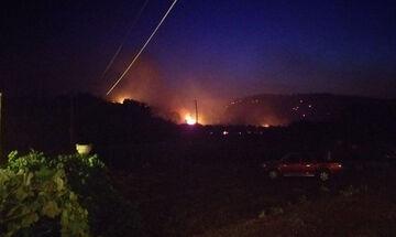 Μαρτίνο: Υπό έλεγχο η πυρκαγιά