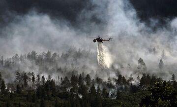 Βάρη: Υπό μερικό έλεγχο η μεγάλη φωτιά (pics)