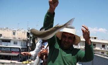 Ο Κηφισός που δεν ειναι νεκρός - Για ψάρεμα στου Ρέντη