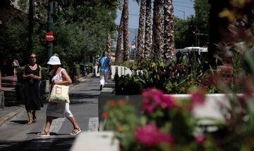 Αλλάζει όψη το κέντρο της Αθήνας: Φοίνικες στην Πανεπιστημίου (pics)