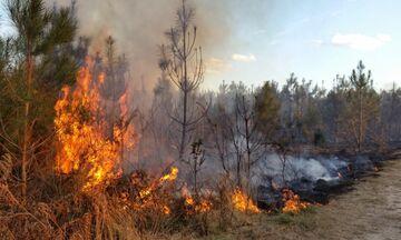 Υψηλός κίνδυνος για πυρκαγιά  - Ποιες περιοχές κινδυνεύουν (χάρτης)