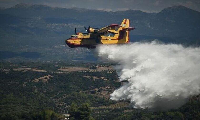 Σε ύφεση η πυρκαγιά στη Βάρης-Κορωπίου σύμφωνα με την Πυροσβεστική