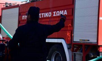 Φωτιά στο Πέραμα σε δασική έκταση, κοντά σε κατοικημένη περιοχή (pic)