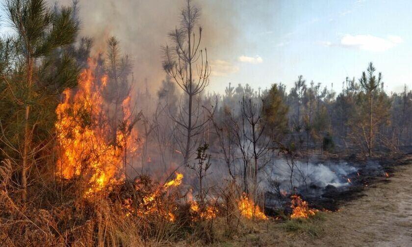 Σε εξέλιξη η φωτιά στο Λαύριο - Εκκενώνονται οικισμοί