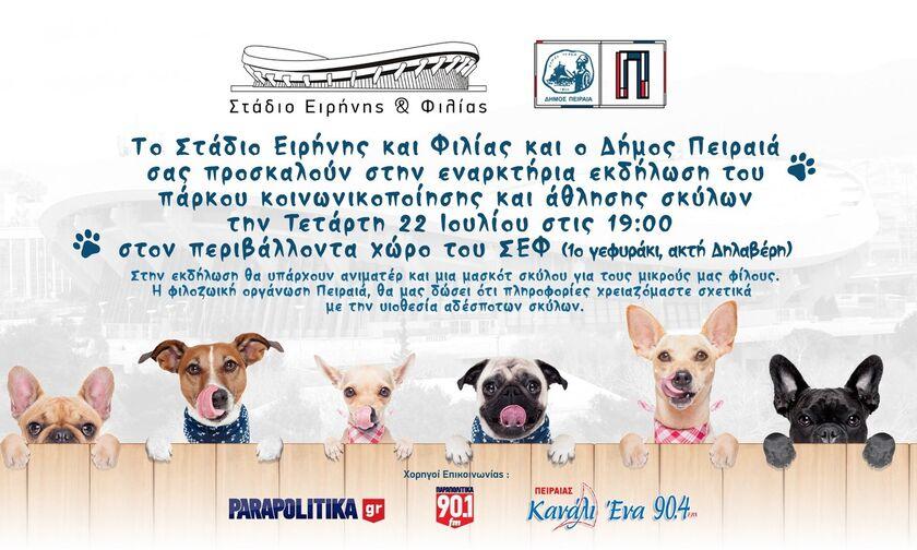 ΣΕΦ: Την Τετάρτη 22/7 ανοίγει το πάρκο κοινωνικοποίησης και άθλησης σκύλων