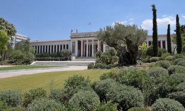 Εθνικό Αρχαιολογικό Μουσείο: Ανάπλαση στον εξωτερικό κήπο με 6.000 φυτά (pics)