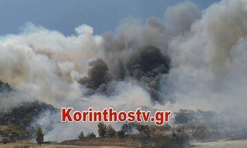 Φωτιά στις Κεχριές: Κατευθύνεται προς Αθίκια - Δόθηκε εντολή εκκένωσης του χωριού (vid)