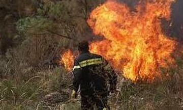 Πενήντα επτά πυρκαγιές το τελευταίο 24ώρο σε όλη την Ελλάδα