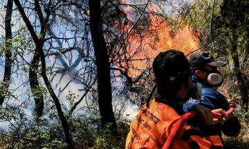 Κόρινθος: Νέο μέτωπο φωτιάς στον Ισθμό, σε μικρή απόσταση από οικίες