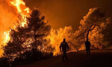 Κεχριές: Εκτός ελέγχου η πυρκαγιά, εκκενώθηκε χωριό και κατασκήνωση (vid)