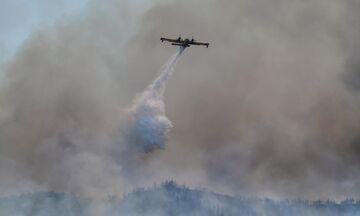 Ηλεία: Μεγάλη φωτιά στην Ολυμπία: Απειλούνται Χελιδόνι, Καυκανιά, Πουρνάρι (vids)