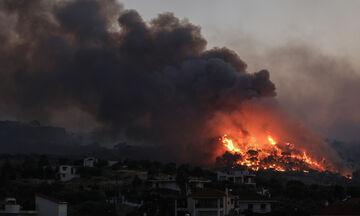 Πυροσβεστική: 54 οι πυρκαγιές που εκδηλώθηκαν το τελευταίο 24ωρο