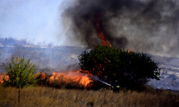 Εξήντα τρεις πυρκαγιές σε όλη την Ελλάδα το τελευταίο 24ωρο