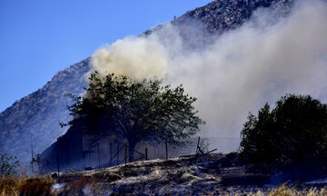 Εξήντα μία δασικές πυρκαγιές το τελευταίο 24ωρο
