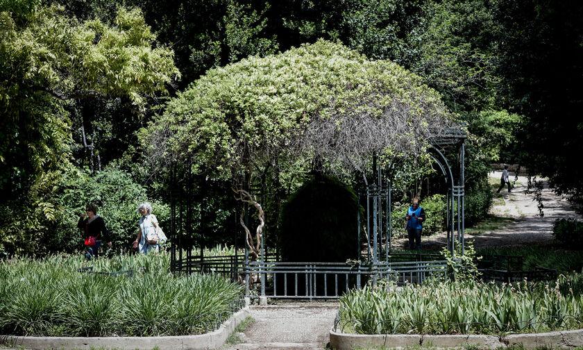 Δήμος Αθηναίων: Αποκατάσταση και ανάδειξη Εθνικού Κήπου και Λόφου Φιλοπάππου
