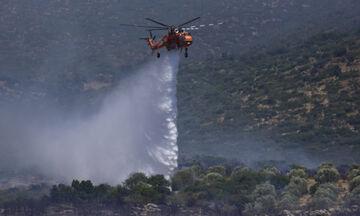 Μεγάλη πυρκαγιά στην Κύπρο - Εκκενώθηκε χωριό!