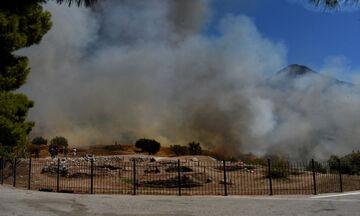 ΥΠΠΟ: Πρώτη εκτίμηση για την πυρκαγιά στον αρχαιολογικό χώρο των Μυκηνών (pics)