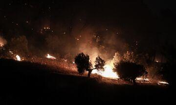 Πυρκαγιά στο Σοφικό Κορινθίας: Ενισχύονται οι δυνάμεις, στη μάχη εναέρια μέσα, εκκενώνονται οικισμοί
