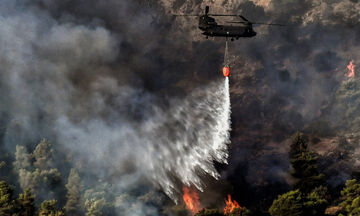 Δασική πυρκαγιά στην Ανατολική Μάνη (pic)