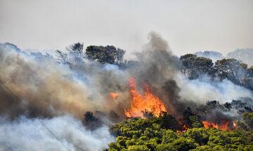 Ανεξέλεγκτη φωτιά στα Καλύβια, εκκενώνονται Ανάβυσσος, Π. Φώκαια, Δροσιά, Αγιασμόθι (vids)