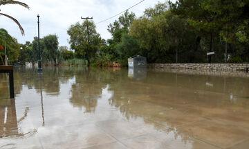 Κυκλώνας «Ιανός»: Νεκρή στα Φάρσαλα - Εγκλωβισμένοι στους Σοφάδες - Καταστροφές σε όλη τη χώρα