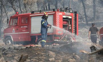 Φωτιά στο Βύρωνα: Υπό μερικό έλεγχο (vid)