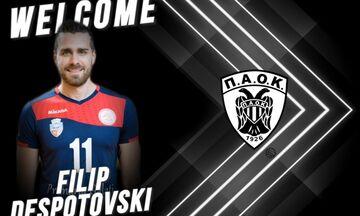 ΠΑΟΚ: Ανακοίνωσε τον Ντεσποτόφσκι