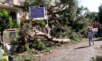 Ηράκλειο Αττικής: Σε κατάσταση Έκτακτης Ανάγκης κηρύχθηκε ο Δήμος