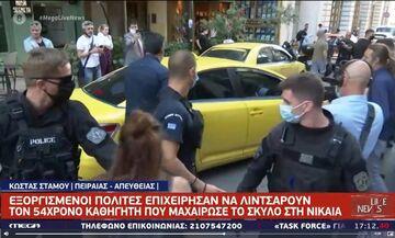 Πειραιάς: Εξαγριωμένο πλήθος στα δικαστήρια όρμησε στον καθηγητή που μαχαίρωσε το σκυλάκι (vid)