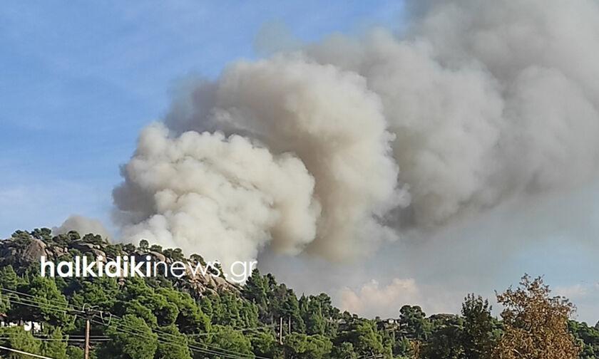 Πυρκαγιά μαίνεται στην Σιθωνία της Χαλκιδικής (vid/pic)