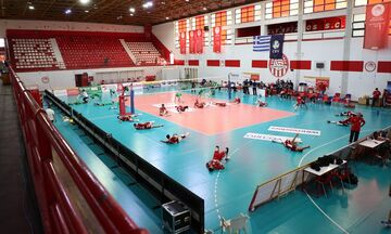 Όλοι πλην ΠΑΟΚ συμφώνησαν για την επανεκκίνηση της  Volley League  ανδρών