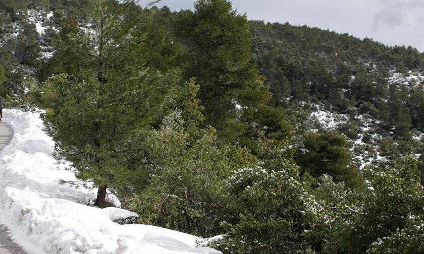 Καιρός: Έρχεται ο χειμώνας, χιόνια και στην Πάρνηθα (vid)