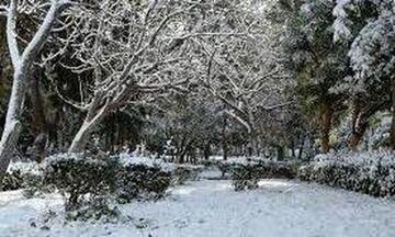 ΕΜΥ: Νέα επιδείνωση του καιρού, χιόνια ακόμη και σε πεδινές περιοχές