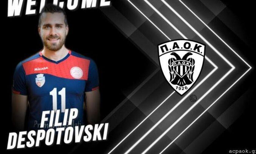 Φιλίπ Ντεσποτόφσκι: Σε απολογία ΠΑΟΚ και παίκτης!
