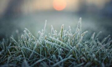 Καιρός: Σε άνοδο η θερμοκρασία