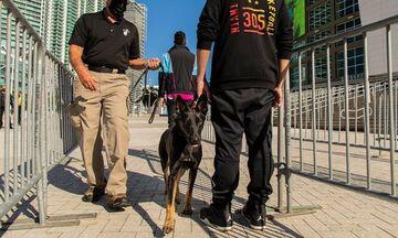 Μαϊάμι Χιτ: Επιστρατεύουν σκύλους για να… ανιχνεύσουν τον κορονοϊό στους φιλάθλους