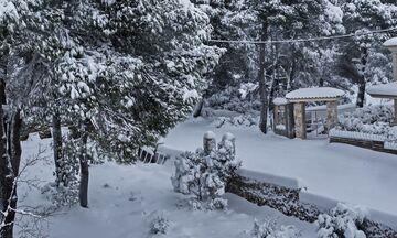 ΕΜΥ: Έκτακτο για πυκνές χιονοπτώσεις στην Αττική