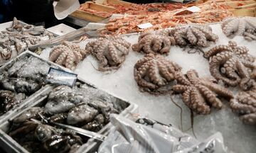 Ψαραγορά: Το ωράριο για Βαρβάκειο και Ρέντη