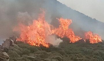 Άνδρος: Μαίνεται η μεγάλη πυρκαγιά – Εκκενώθηκαν δύο χωριά