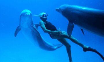 Παγκόσμια Ημέρα της Γης: Δείτε δωρεάν το βραβευμένο «Dolphin Man» του Λευτέρη Χαρίτου (vid)