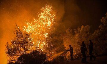 Φωτιά στον Σχίνο Κορινθίας – Εκκενώνονται οικισμοί (vid)